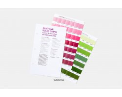 PANTONE Solid Chips Coated & Uncoated Supplement